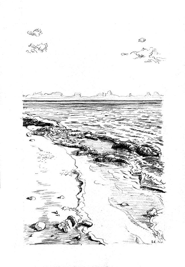 dessin de rivage à l'encre