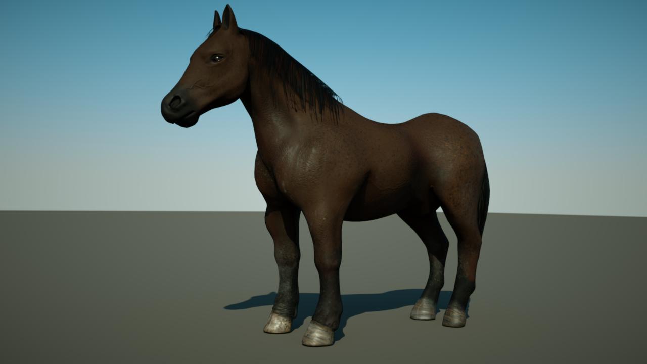 cheval 3d animation version 2. Black Bedroom Furniture Sets. Home Design Ideas