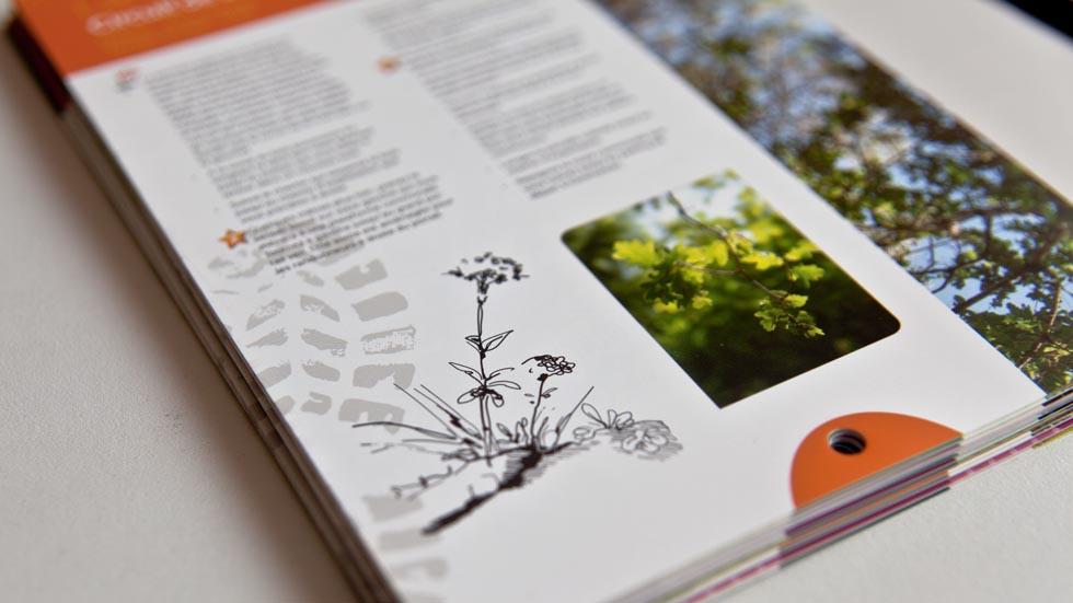 graphisme-topo-guide-09