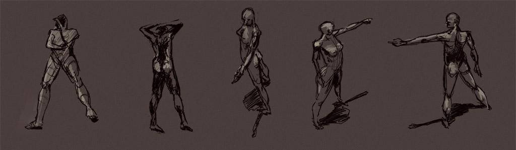 etudes anatomiques